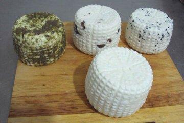 גבינת עיזים צפתית
